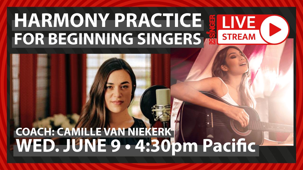 Harmony Practice For Beginners